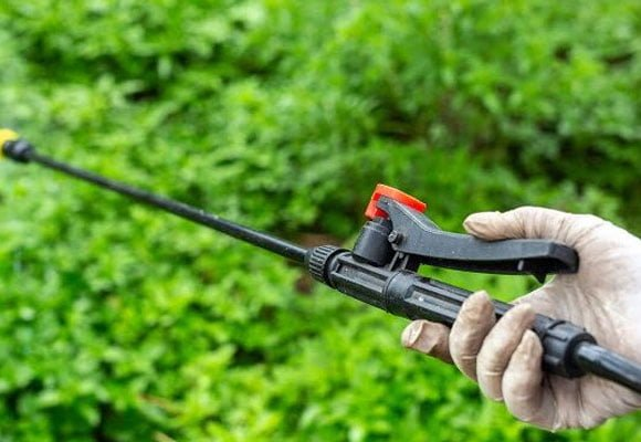 Garden-pest-control