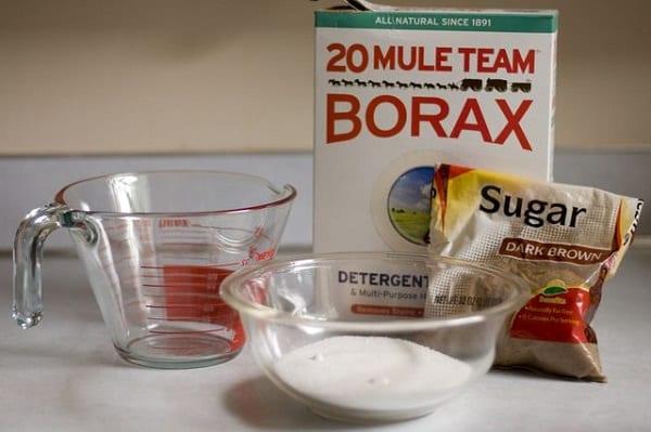 get rid of sugar ants