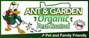 ant garden organic pest control