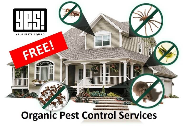 FREE Organic Pest Control Services for Elite Yelpers Portland!